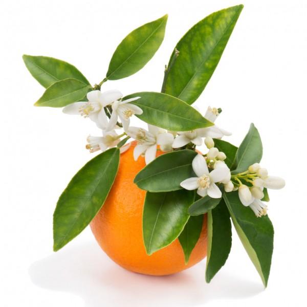 arôme fleur d'oranger (10ml) - pur e-liquide